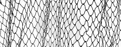 fish-net-13262788